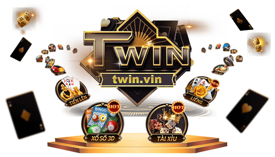 banner twin